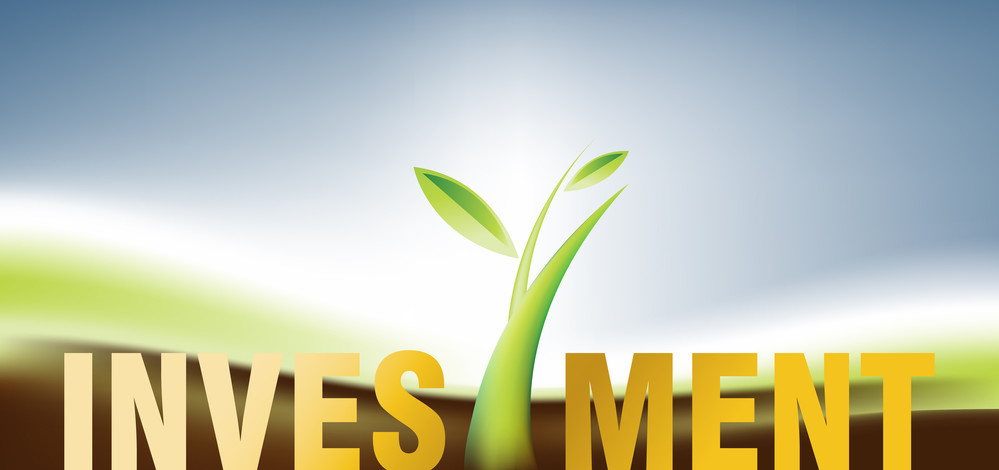 Investment On Small Businesses – Reasons To Do So!