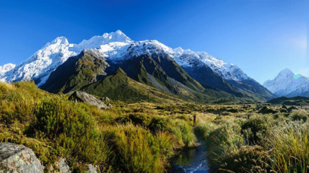 Paradise in South Pacific, Attractions of New Zealand and Vanuatu